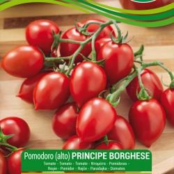 Principe Borghese Tomato Seeds  - 1