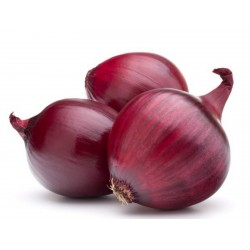 Red Brunswick Onion Seeds  - 2