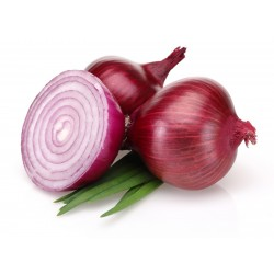 Red Brunswick Onion Seeds  - 1
