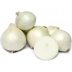 Sementes de cebola White Lisbon  - 1