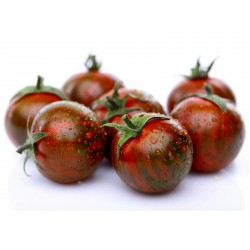 Artisan Purple Bumblebee Cherry Tomato Seeds Seeds Gallery - 1