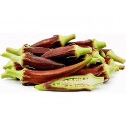 Rote Okra Samen (Abelmoschus esculentus)  - 5