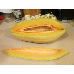 Exotic Melon Banana Seeds - Organic Cantaloupe
